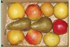 1ère livraison de fruits dans la bonne humeur !