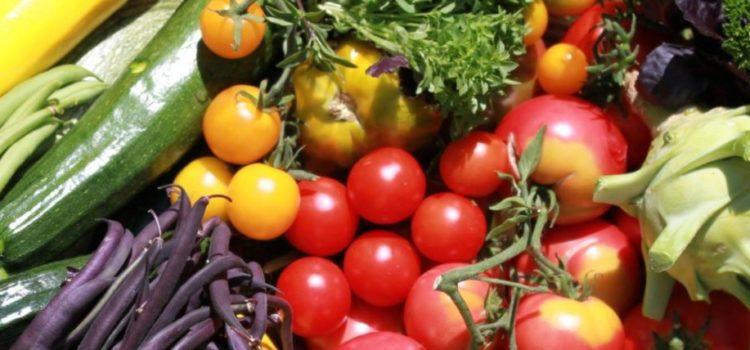 Panier légumes – Présentation de Simon et du projet des 3 Parcelles