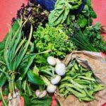 Etal d'un panier de légumes